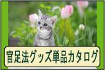 官足法 健康グッズ カタログ