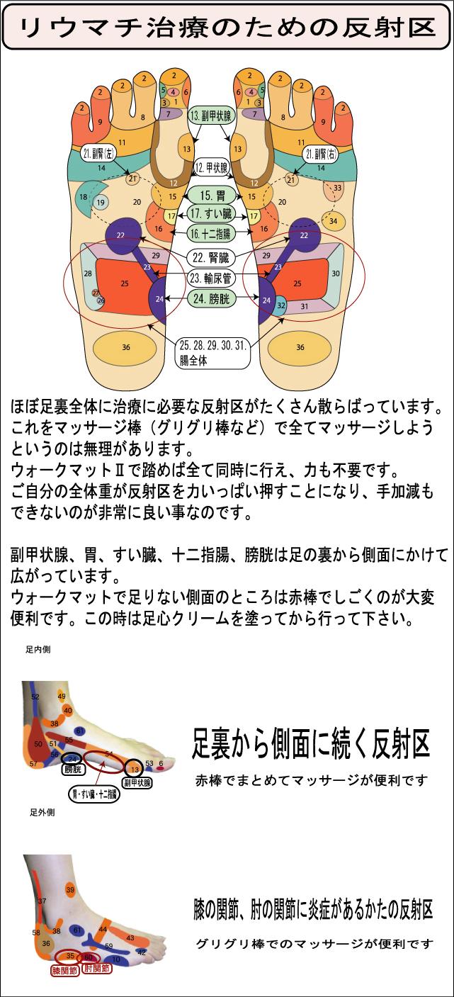 リウマチ 治療セット 反射区説明